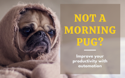 Not a morning pug? – Automate your social media marketing